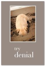 Cardthartic Cardthartic - Try Denial Birthday Card