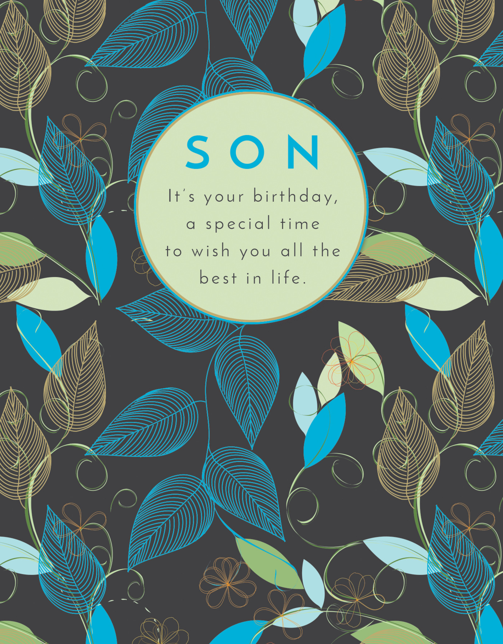 Pictura Pictura - Son Birthday Card 60604