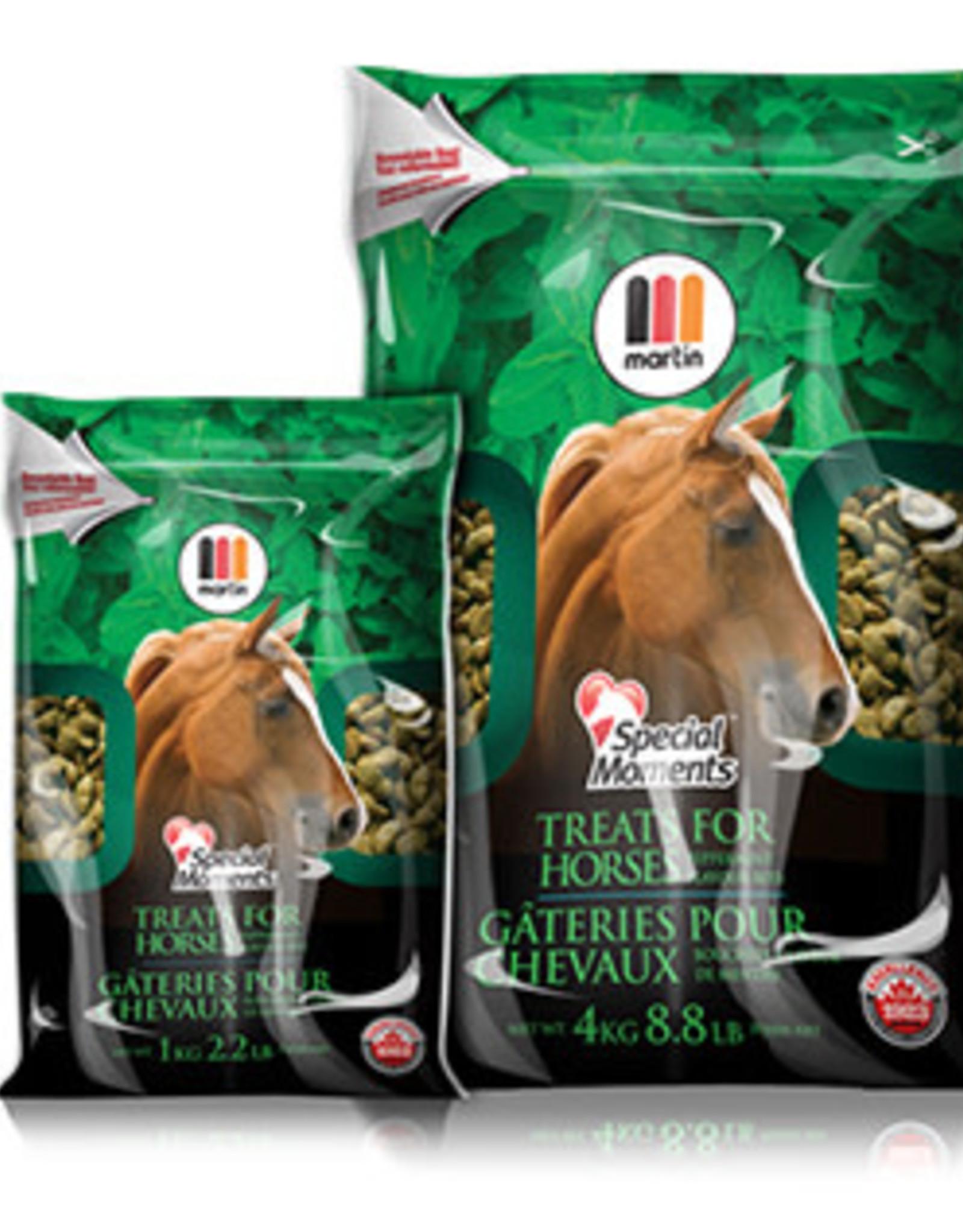 MARTIN MILLS SPECIAL MOMENTS HORSE TREATS