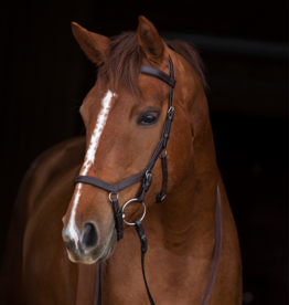 RAMBO MICKLEM COMPETITION BRIDLE WITH REINS