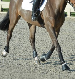EQUIFIT ESSENTIALS EVERYDAY BOOT SET