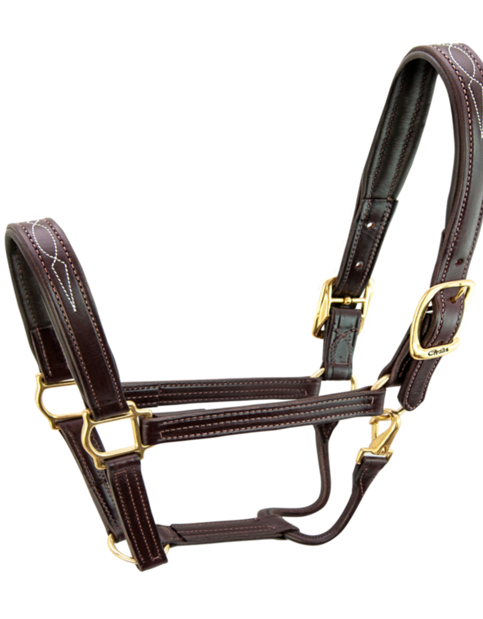 WALSH SIGNATURE HALTER