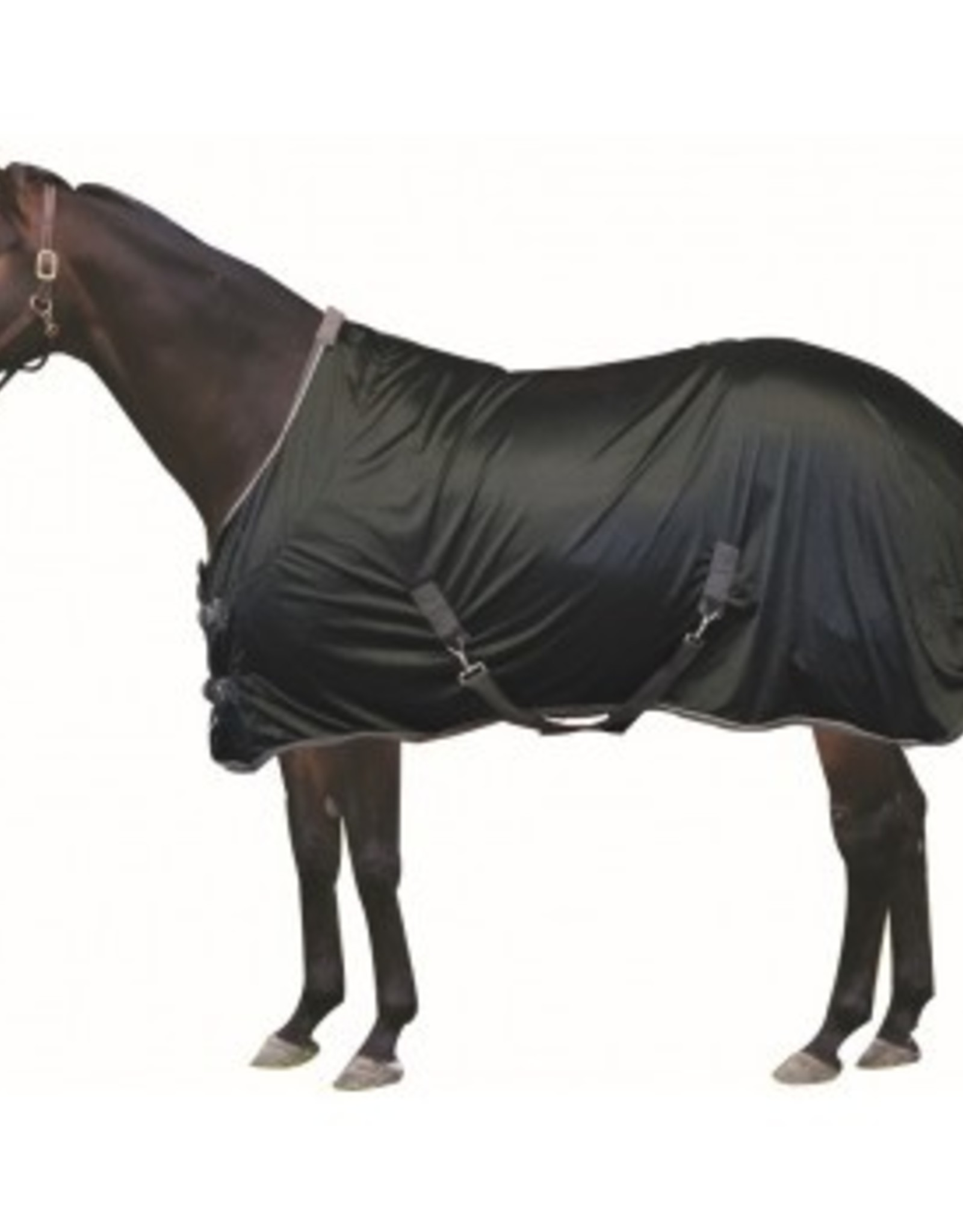 CENTURY ATHLETIC STABLE SHEET