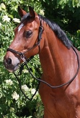 WALDHAUSEN KNOT HALTER WITH REINS
