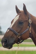 GER-RYAN RAISED, FANCY STITCHED LEATHER HALTER