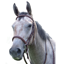 FANCY RAISED HUNTER BRIDLE