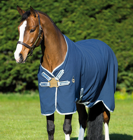 RAMBO HELIX STABLE SHEET (DISC FRONT)