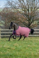 BUCAS  FREEDOM TURNOUT( PONY) 300G