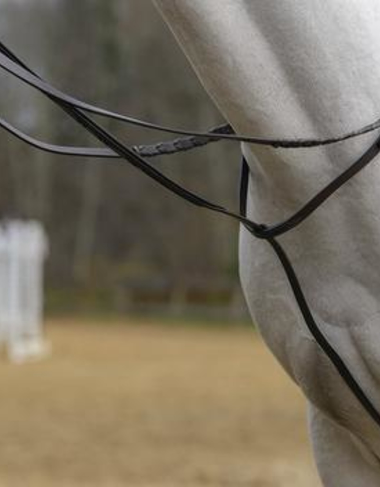 SHIRES STANDING MARTINGALE