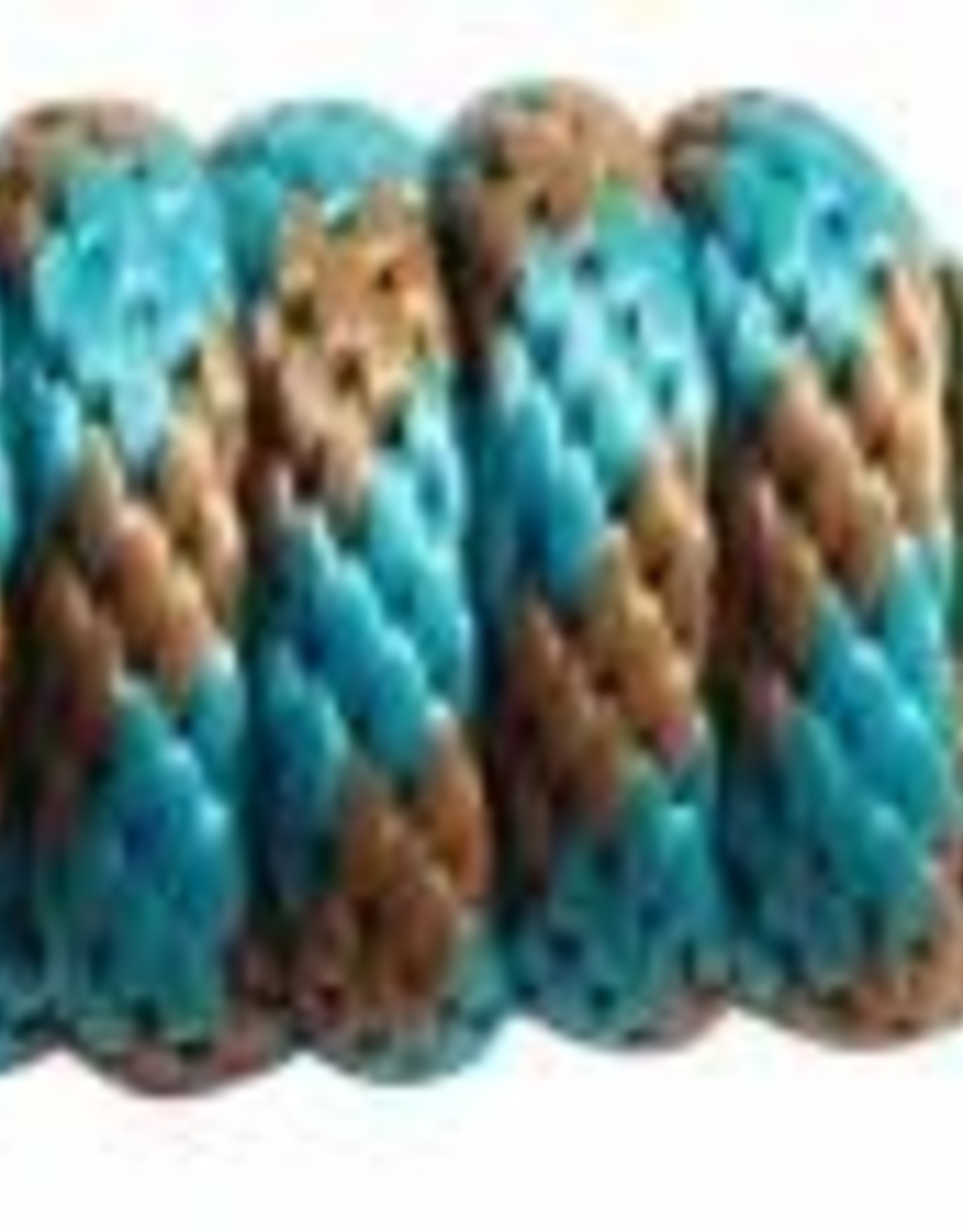 PROFESSIONAL'S CHOICE 10' POLY LEAD ROPE
