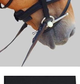 THINLINE CHIN, POLL & NOSEBAND GUARD