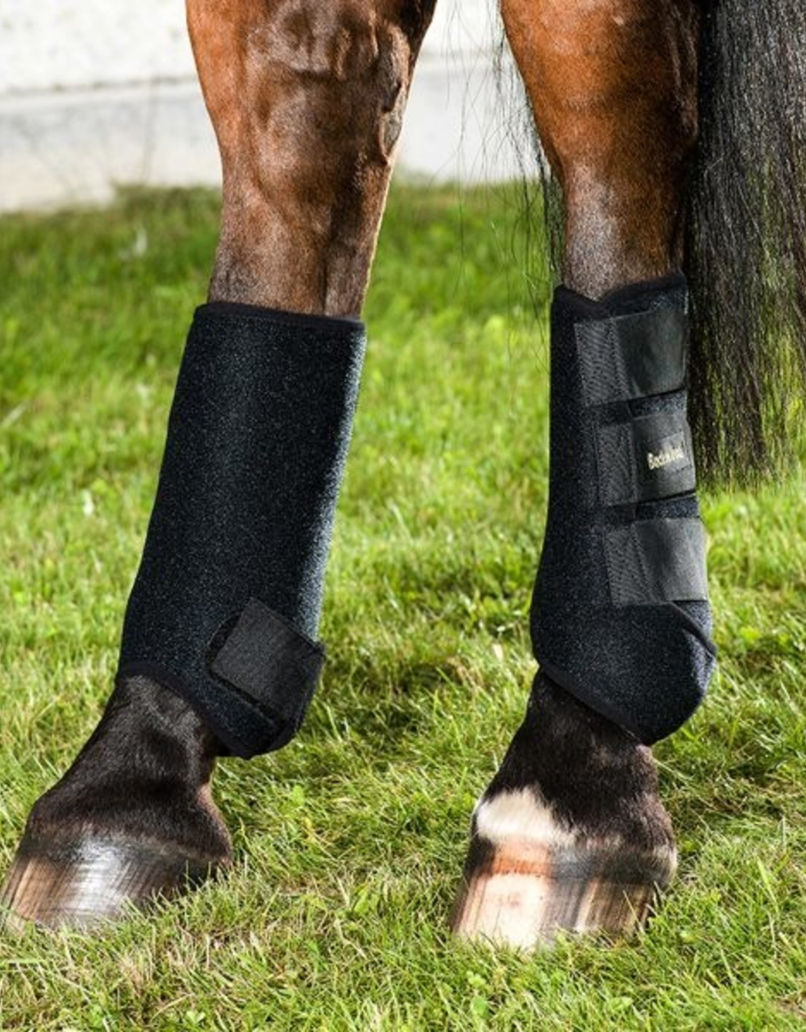 BACK ON TRACK EXERCISE BOOT - HIND LEG