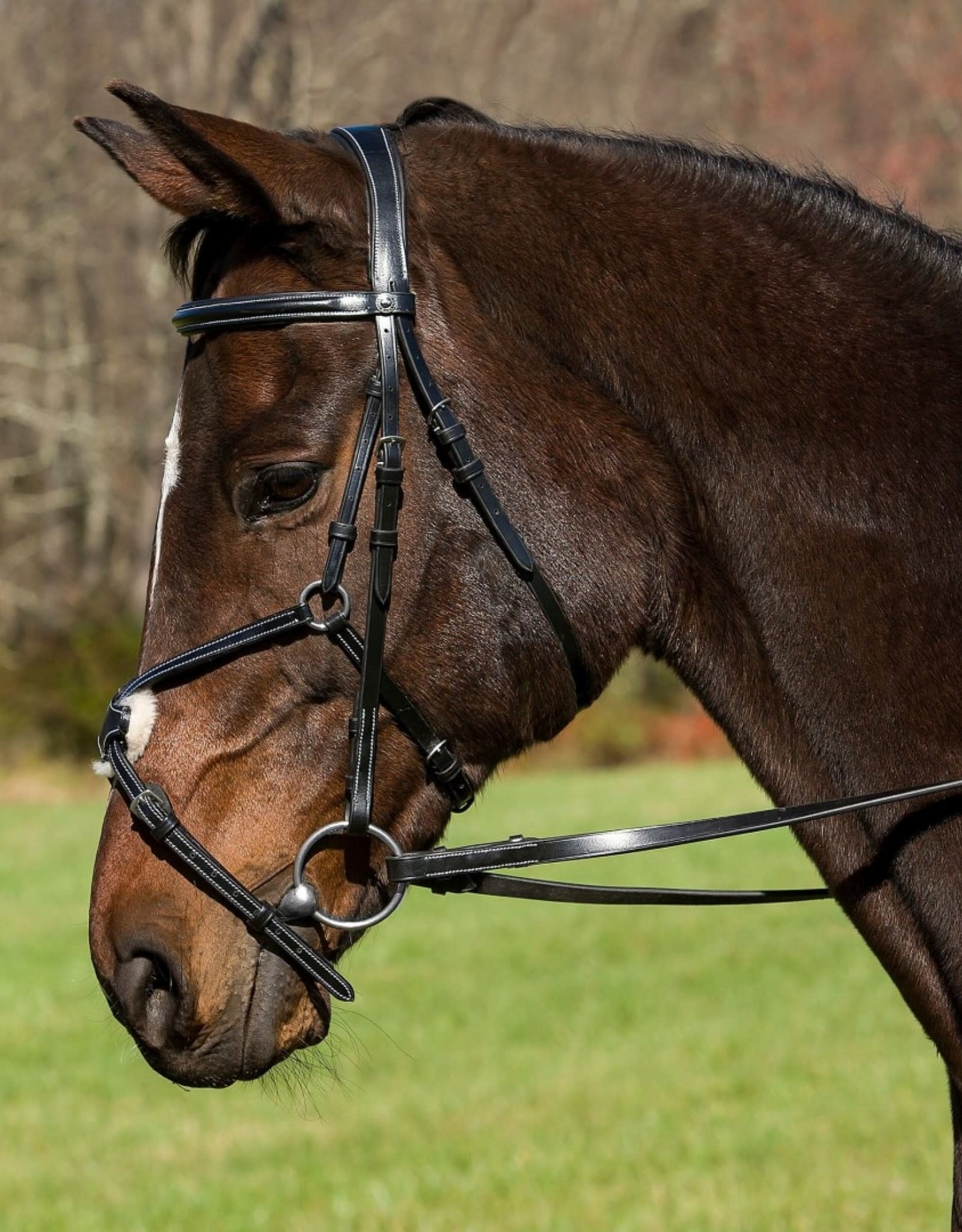 HDR PRO MONO CROWN RAISED FIGURE 8 BRIDLE WITH RUBBER GRIP REINS