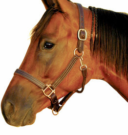 """DELUXE 1"""" TRIPLE STITCHED LEATHER HALTER"""