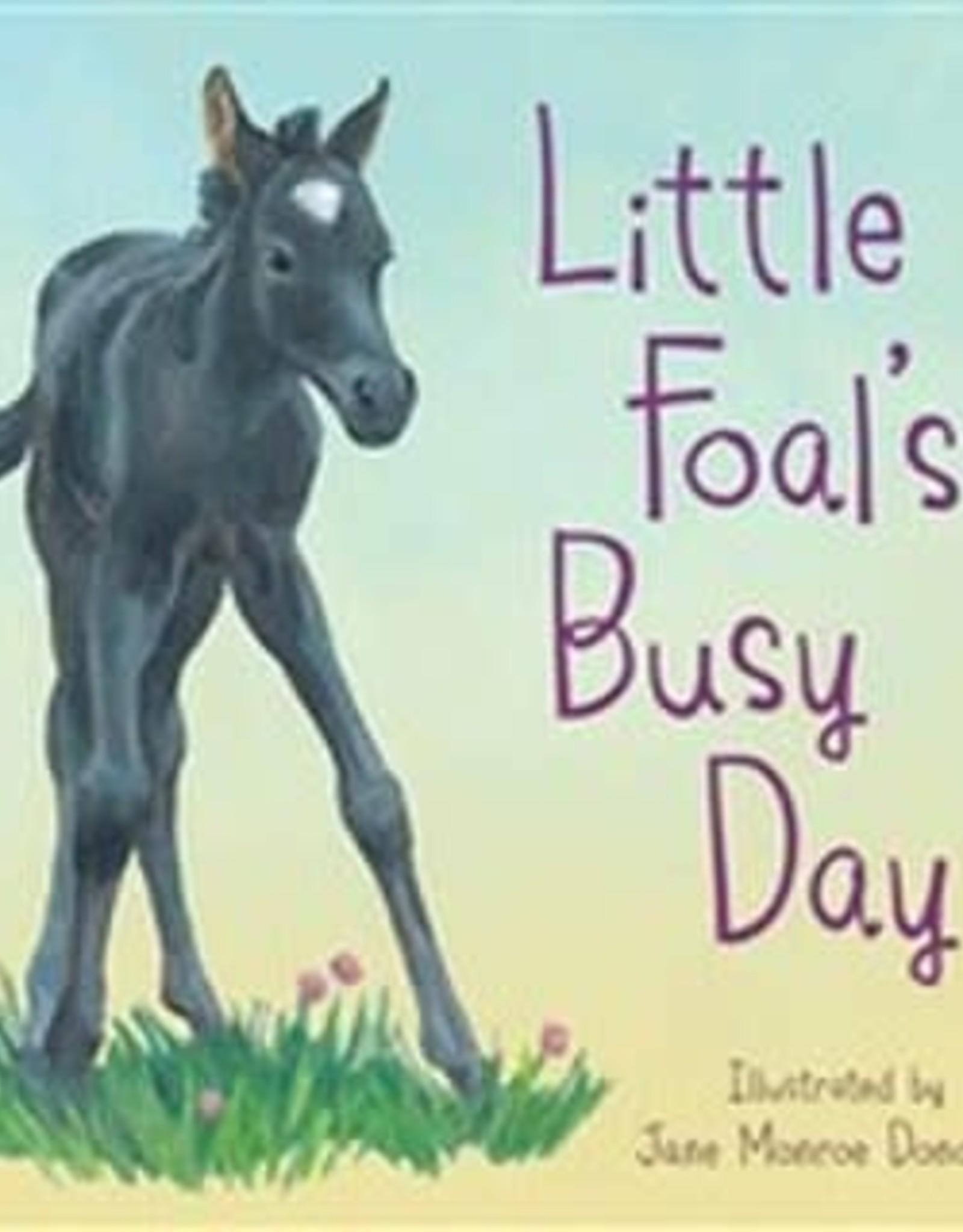 LITTLE FOAL'S BIG DAY
