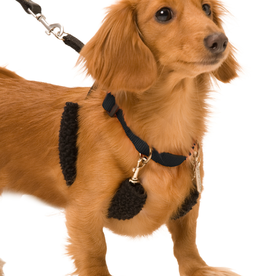SPORN PET PRODUCTS Sporn | Training Halter