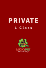 Private Training Class (45 min)