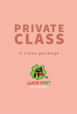 Private Training Classes (6 Pack, 45 min)