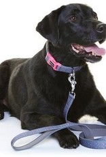 DOOG Doog | Neoprene Dog Lead - Marley