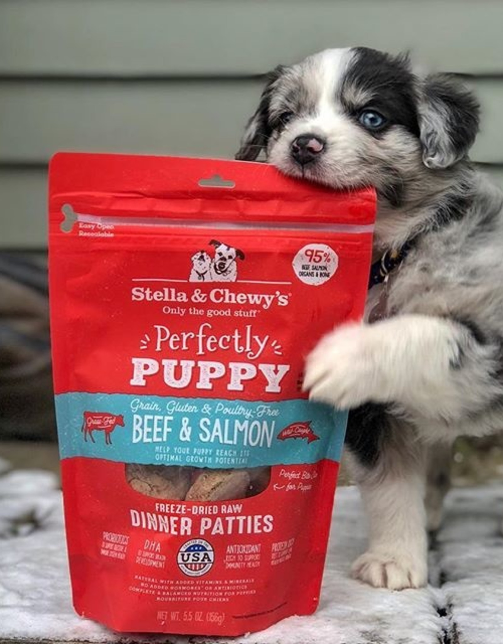 STELLA & CHEWY'S Stella & Chewy's | Perfectly Puppy Beef & Salmon Dinner Patties 14 oz