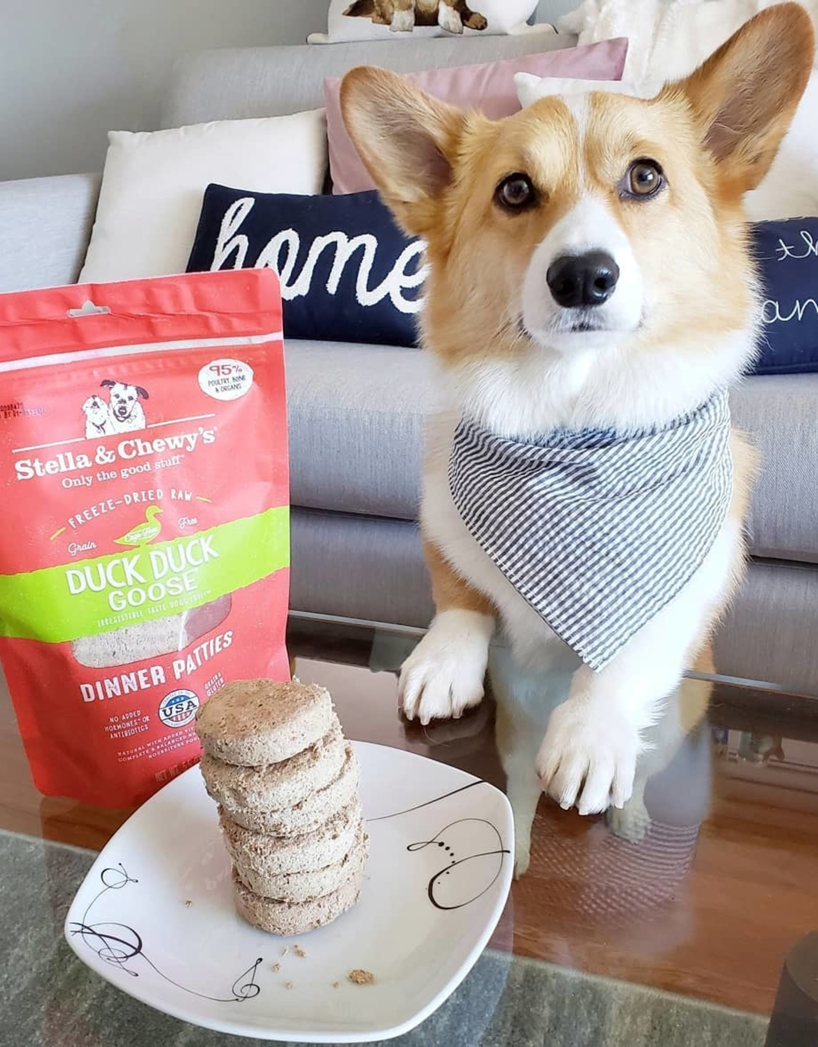 STELLA & CHEWY'S Stella & Chewy's | Freeze Dried Patties Duck Duck Goose