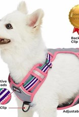 Blueberry Pet Blueberry Pet | 3M Reflective Multi-colored Stripe Dog Harness