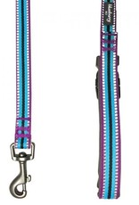 Blueberry Pet Blueberry Pet | 3M Reflective Multi-colored Stripe Dog Leash