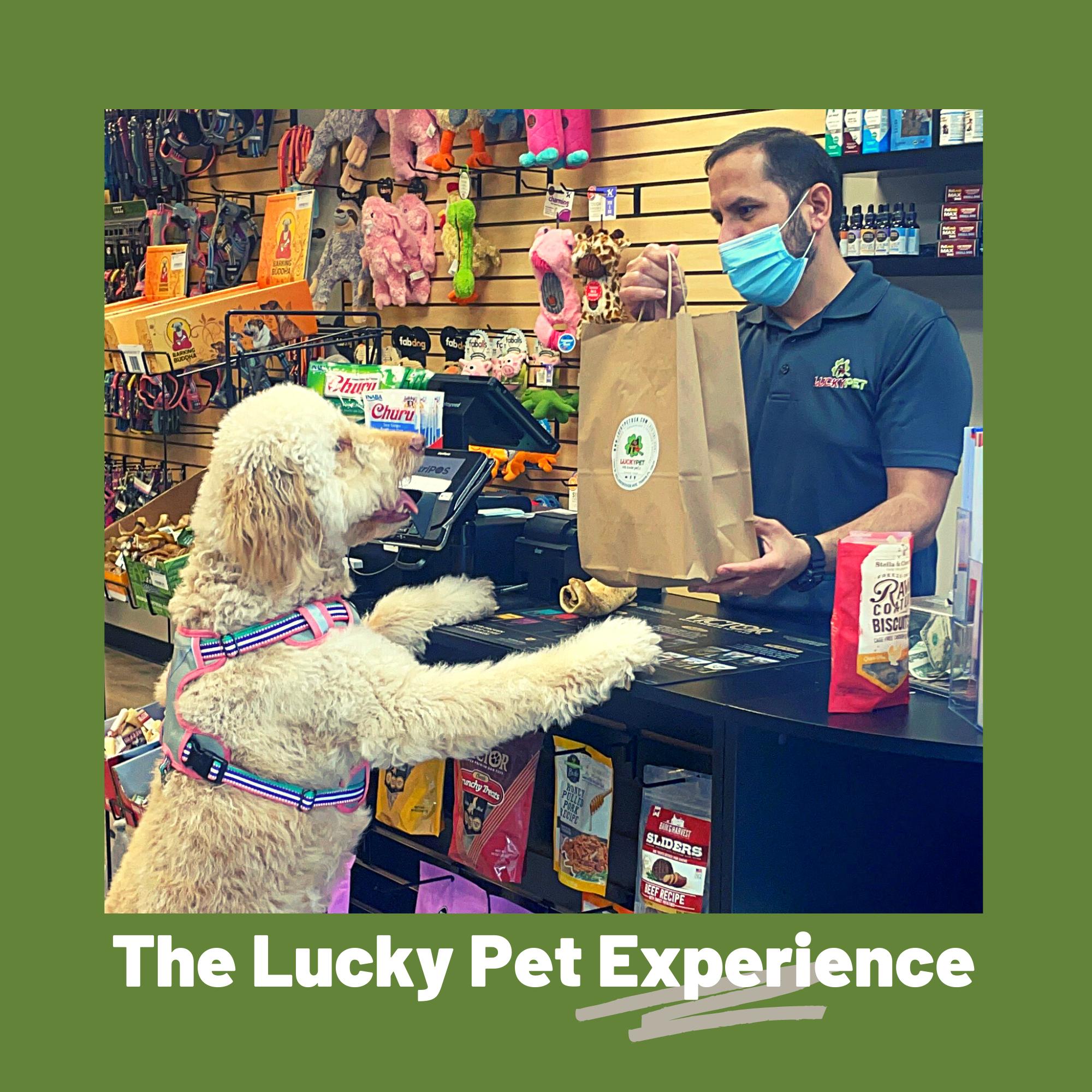 Gerardo Diaz, Lucky Pet owner