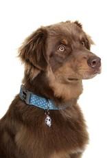 DOOG Doog   Dog Collar - Snoopy