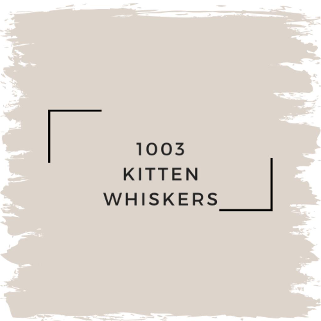 Benjamin Moore 1003 Kitten Whiskers