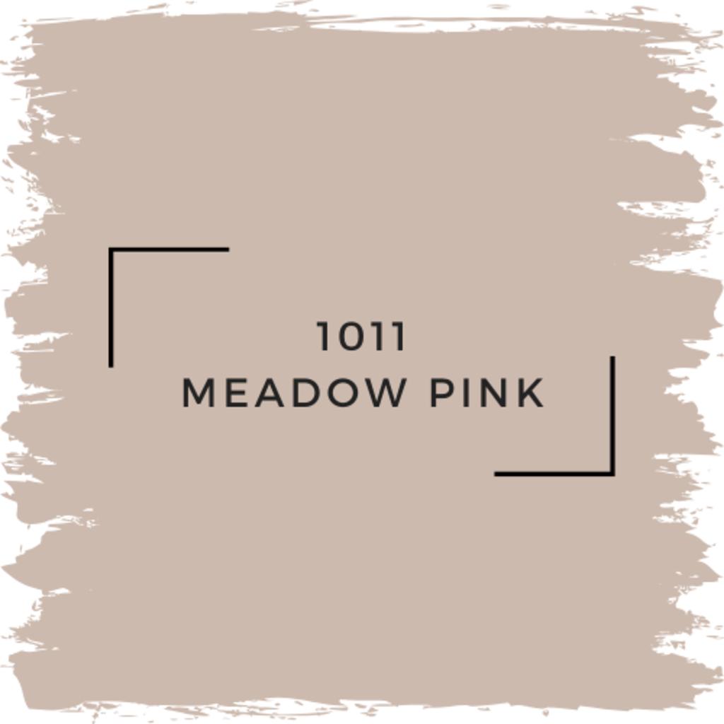 Benjamin Moore 1011 Meadow Pink