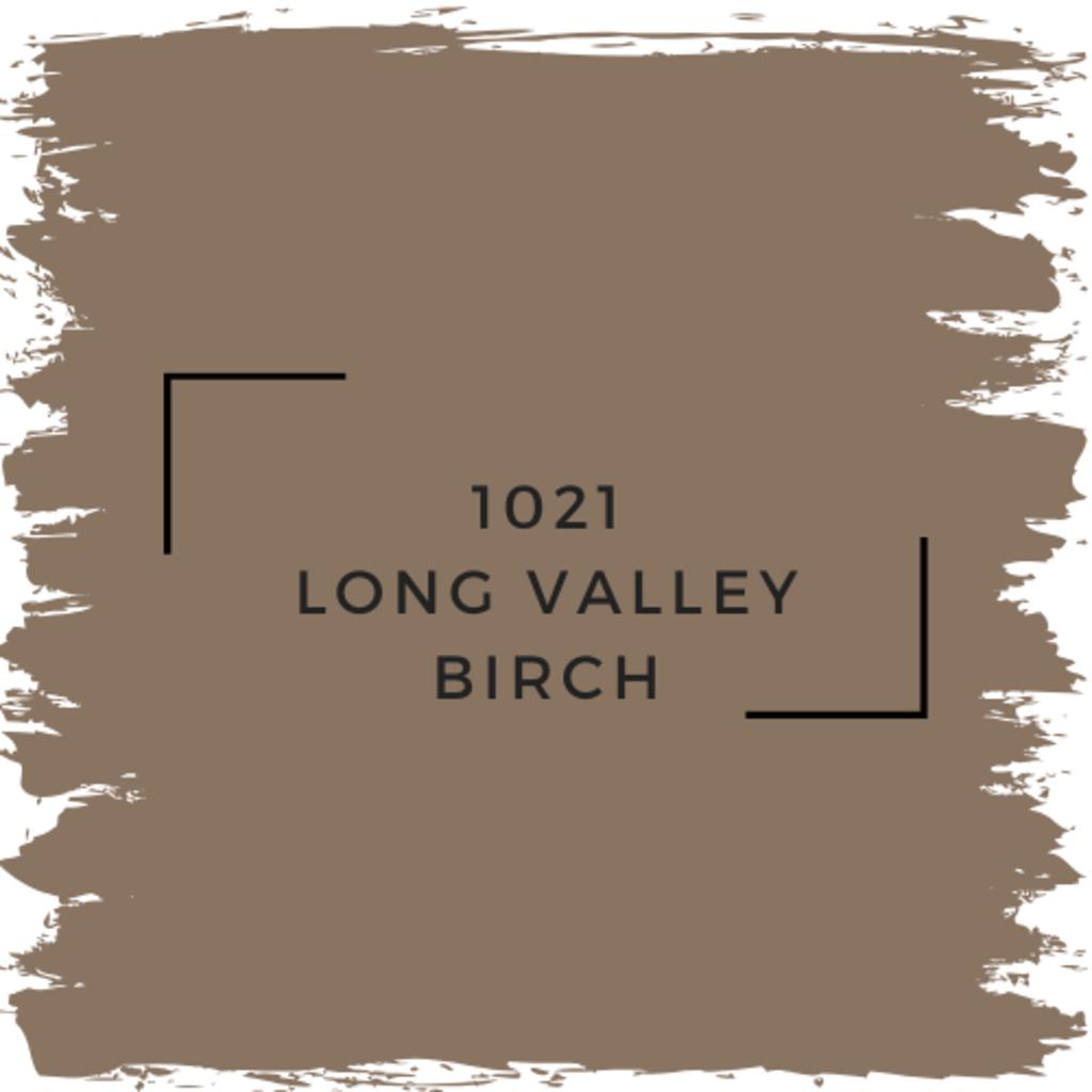 Benjamin Moore 1021 Long Valley Birch