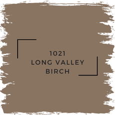 Benjamin Moore 1021 Long Valley Birch