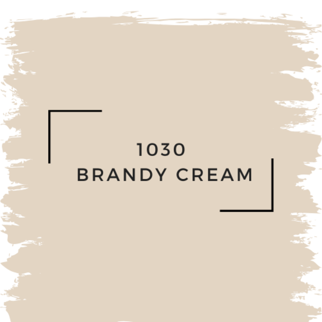Benjamin Moore 1030  Brandy Cream