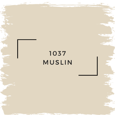 Benjamin Moore 1037 Muslin