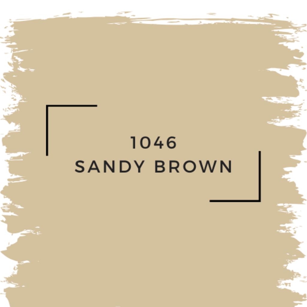 Benjamin Moore 1046 Sandy Brown