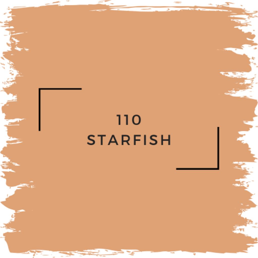 Benjamin Moore 110 Starfish