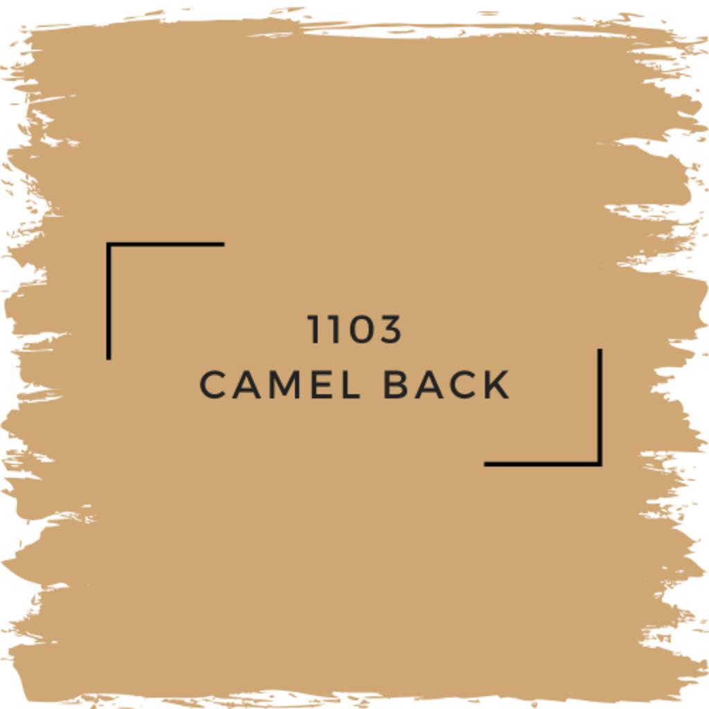 Benjamin Moore 1103 Camel Back