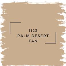 Benjamin Moore 1123 Palm Desert Tan
