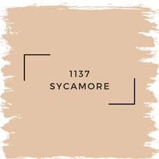 Benjamin Moore 1137 Sycamore
