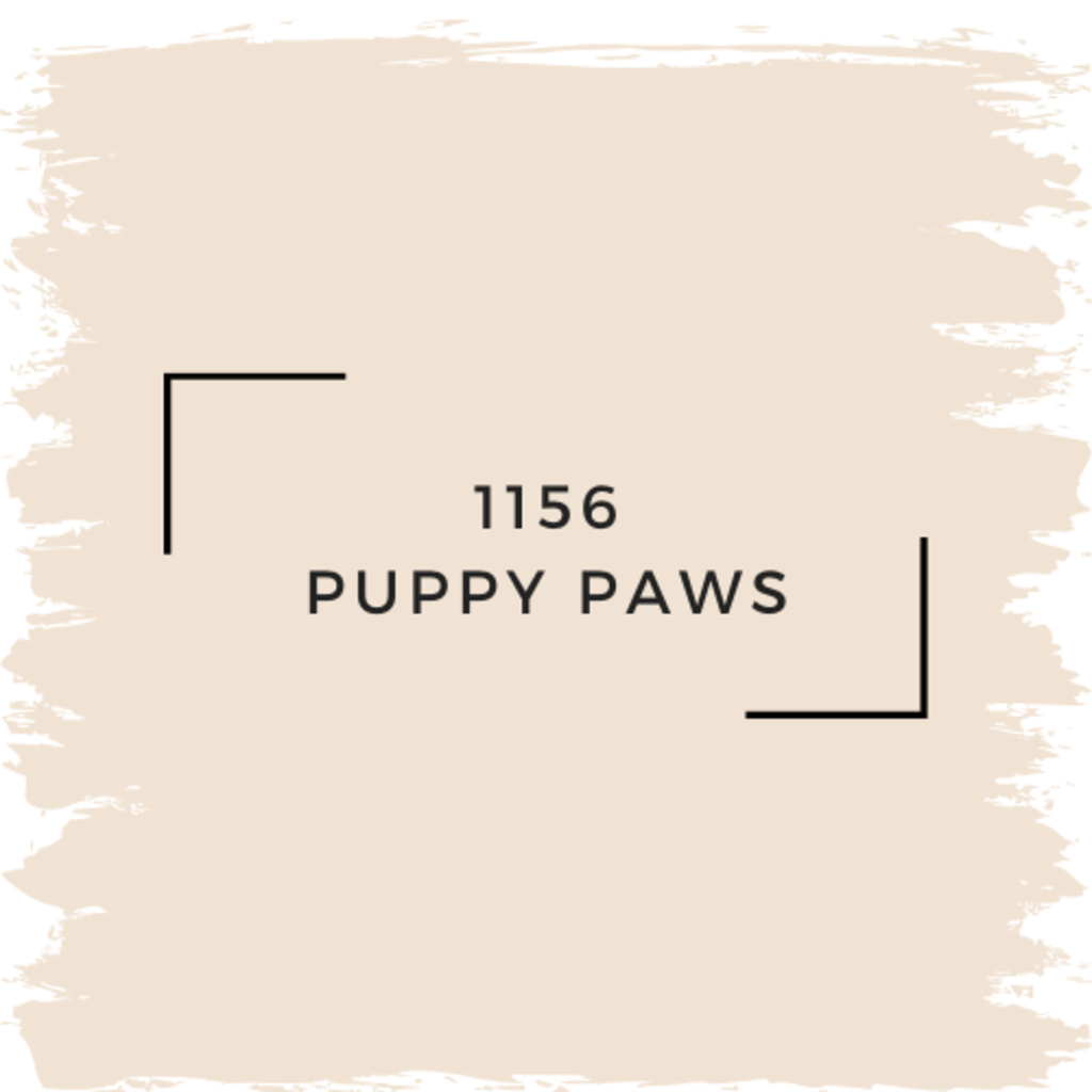 Benjamin Moore 1156 Puppy Paws