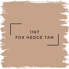 Benjamin Moore 1167 Fox Hedge Tan