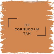 Benjamin Moore 119 Cornucopia Tan
