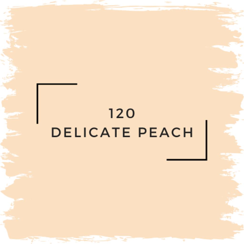 Benjamin Moore 120 Delicate Peach