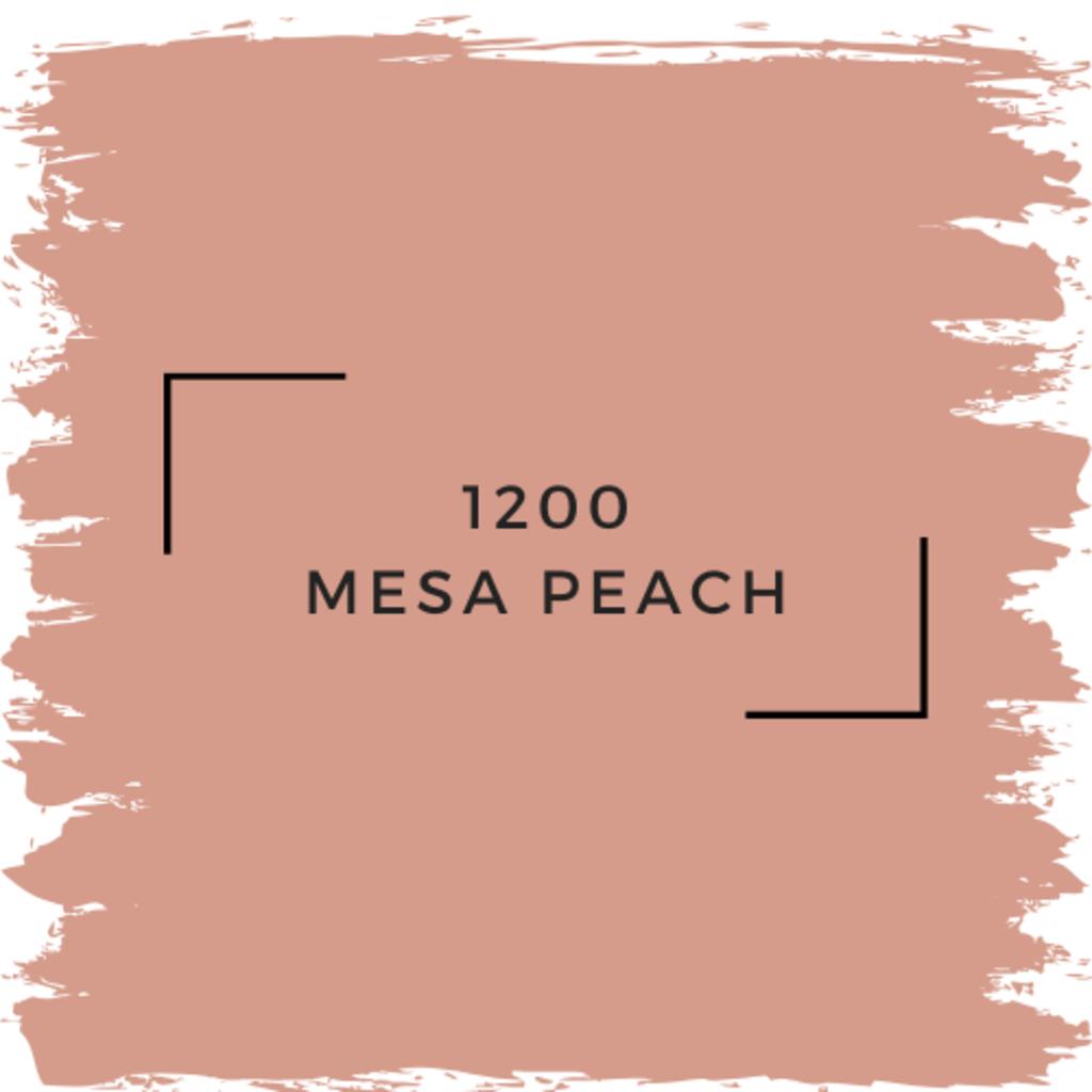 Benjamin Moore 1200 Mesa Peach