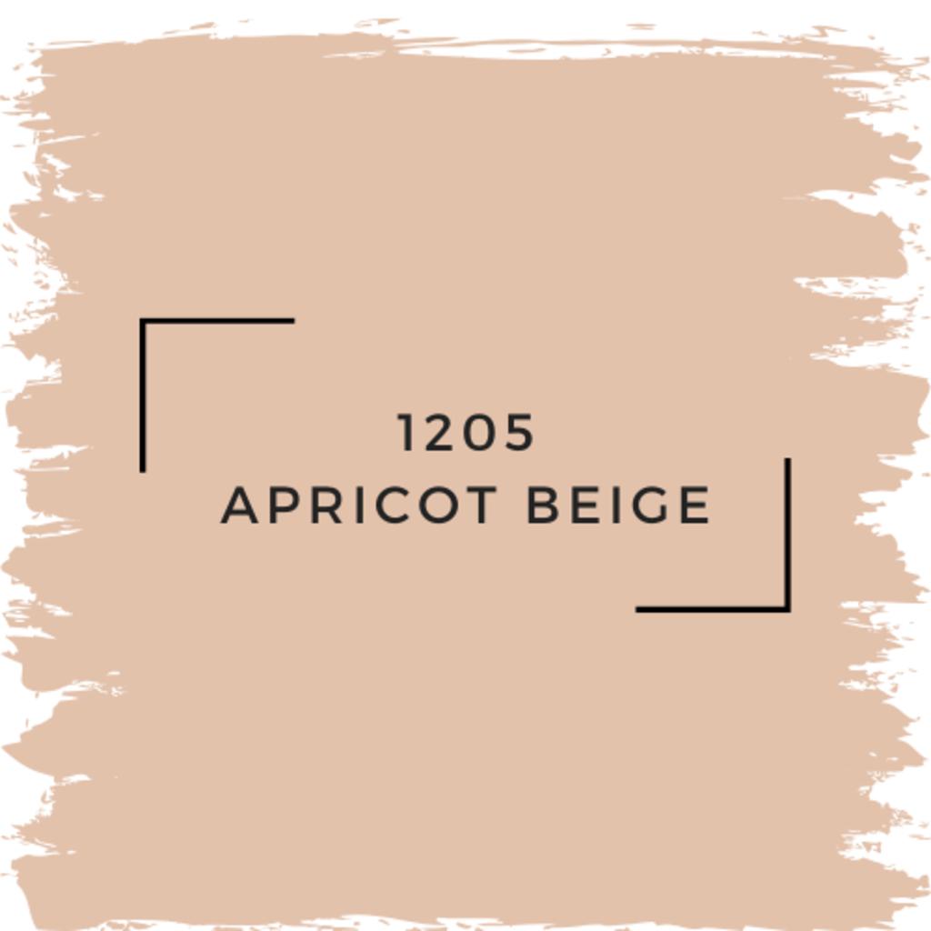 Benjamin Moore 1205 Apricot Beige