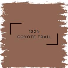 Benjamin Moore 1224 Coyote Trail