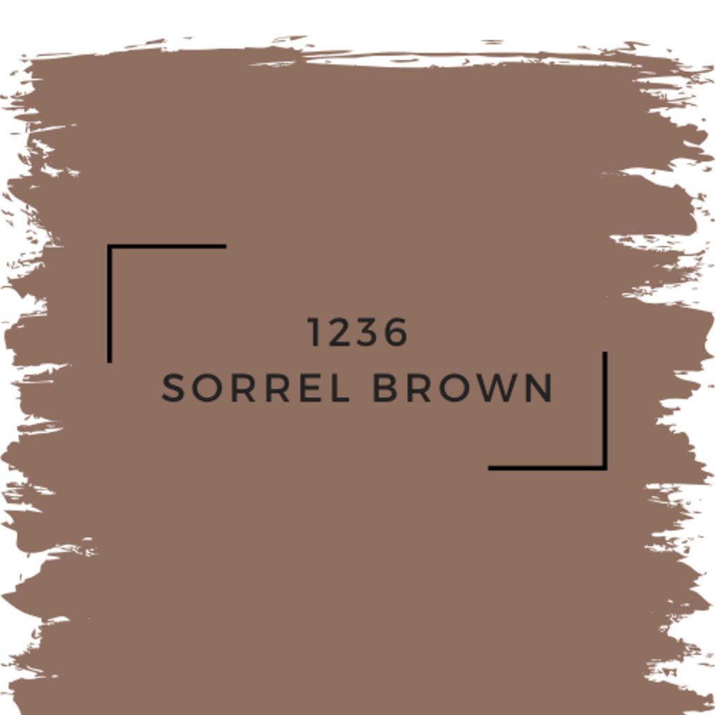 Benjamin Moore 1236 Sorrel Brown