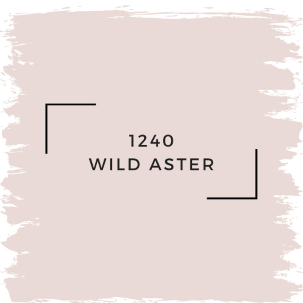 Benjamin Moore 1240 Wild Aster