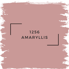 Benjamin Moore 1256 Amaryllis